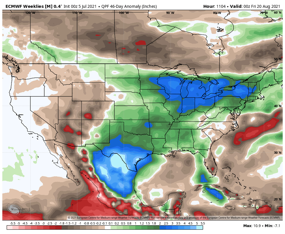Longer term precipitation outlook