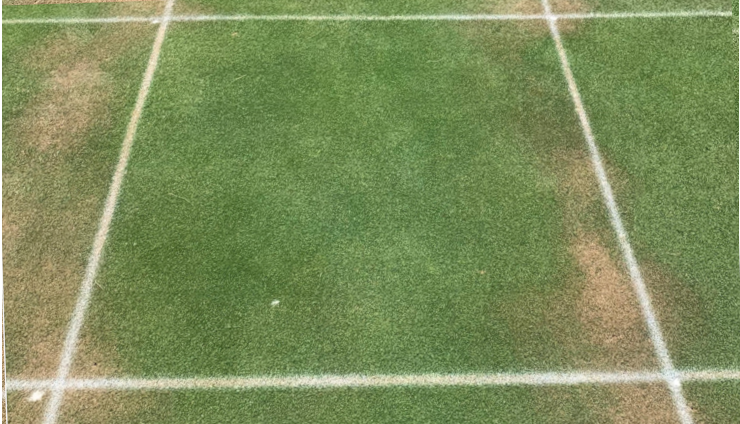 field b is treated in the center with wetting agents showing a more even field