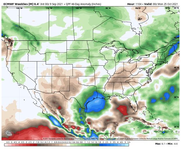 ecmwf weeklies long term precipitation forecast