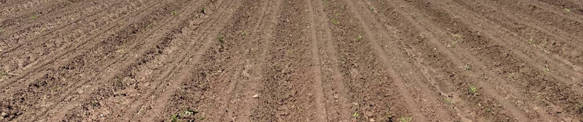 A field without crops ready for pre-emergence herbicide applications to place before crops emerge. Proper application helps provide a good competition-free environment for crops to begin their development.